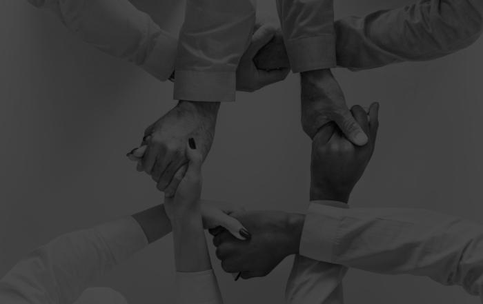 relazioni con i distrbutori/relationships with distributors 2