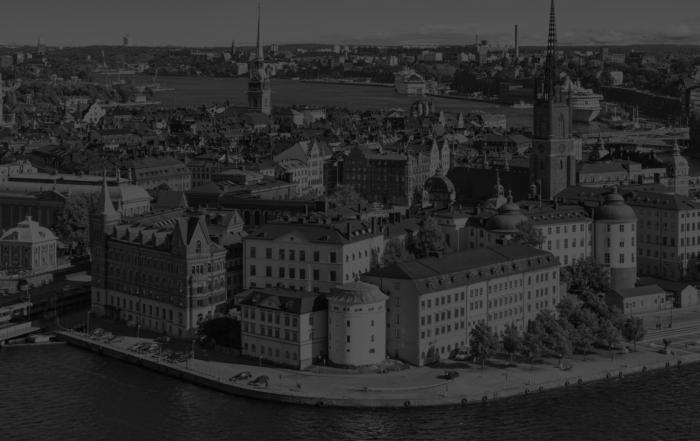 segmentazione del mercato svedese