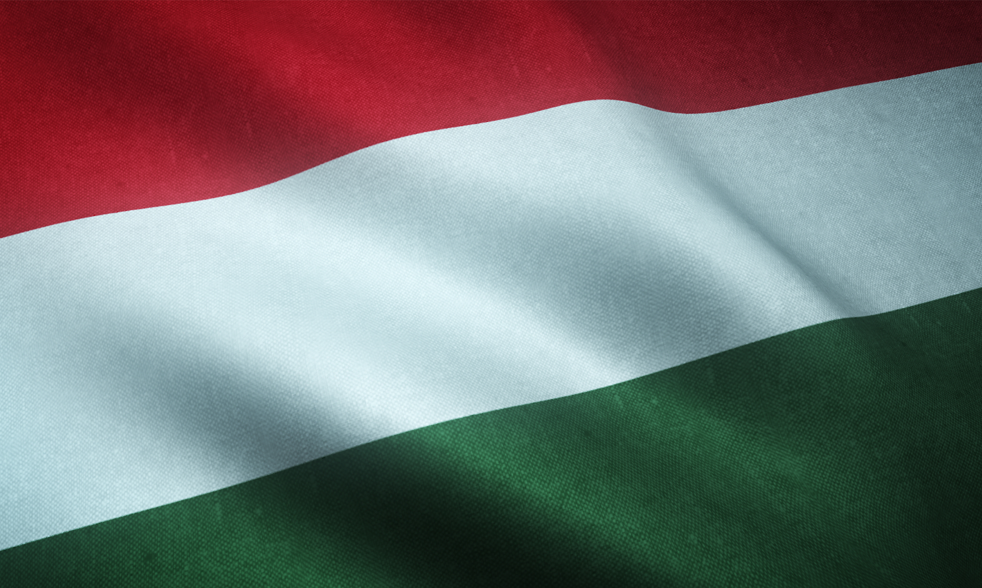 Esportare in Ungheria/What to export in Hungary 2