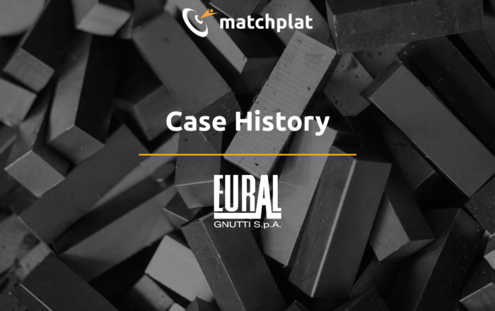 Case history - Eural Gnutti